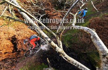 WMBQuantocks_118_blog